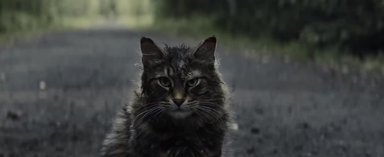 Список актеров фильма Кладбище домашних животных с фото